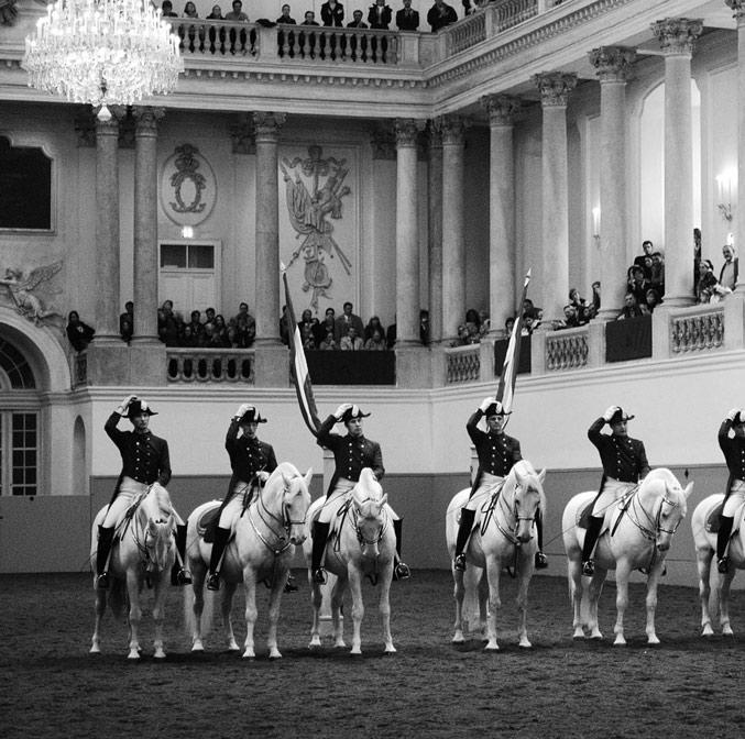 Ecole espagnole d'équitation de Vienne