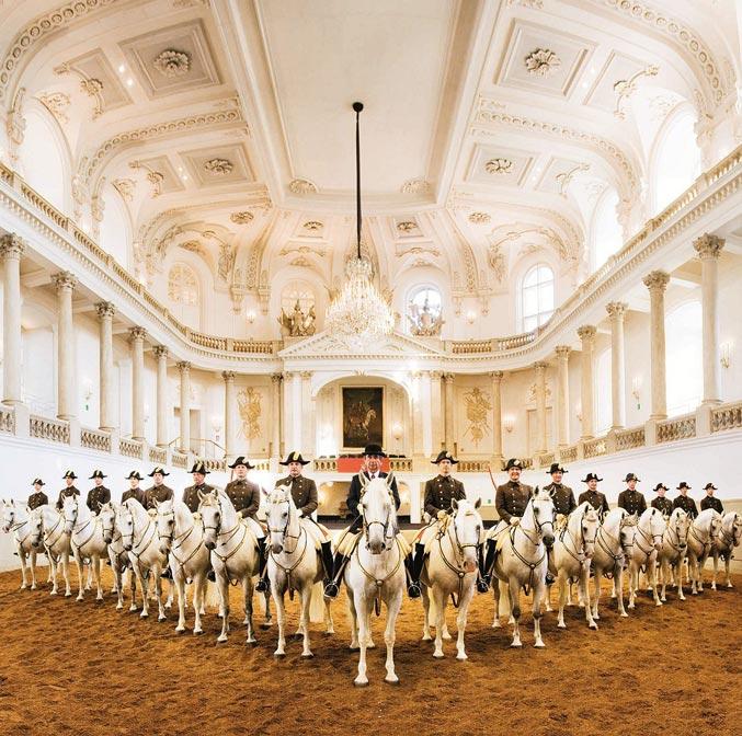 Ecole équestre Lipizzi à Vienne
